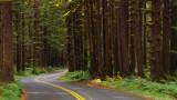 So Many Roads…