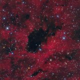 Dark and Reflection Nebulae