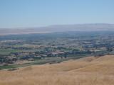 Verdant Valley In The Desert