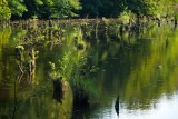 A Hubertlaki-tó - Lake Hubertlak