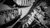 Tadefna Barques abandonnées