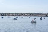 Boating on the Tidal Basin