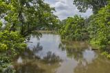 Kenilworth Marsh