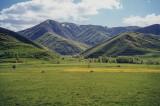 Green Bitlis