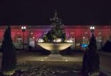 US Botanic Garden, again