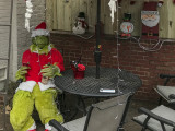 The Grinch on Capitol Hill