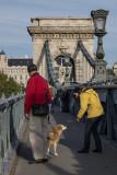Making friends on Chain Bridge