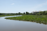 Kingman wetlands, RFK Stadium