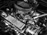 Automotive Expressions
