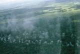 Air strike near Highway One - Pilot's view