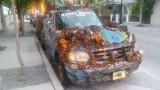 Reef Truck