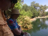 feeding fish in the pond