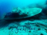 Krk Juli 2017 _ Olympus TG-4 - Underwater Photos