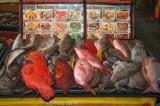 Fresh-caught seafood on offer at the Night Market, Kota Kinabalu