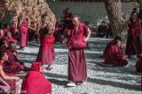 Monks in debate at Sera Monastery