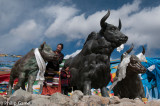 Larger-than-life yak sculptures celebrate the 5000-metre Mila Pass