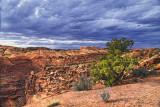 Canyonlands North