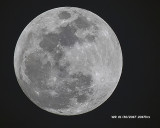 5F1A1140 Moon 2047.jpg