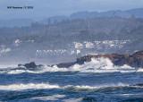 5F1A6994_Oregon_Coast_.jpg