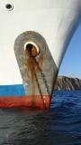 Galapagos Legend Anchor Chain