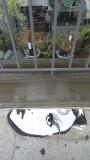 Typewriters, plants and street art on 9th Street