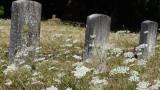 McMinnville Masonic Cemetery