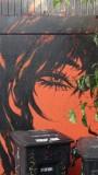 Harriet Street Street Art