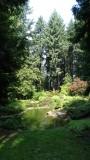 The Grotto Gardens