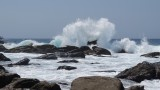 Big Waves Crashing