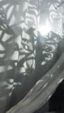 Curtain with Shadows
