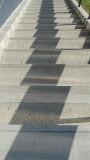 La Brea Tar Pits Museum Staircase