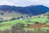 Farm Scene In the Lake District