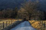 Sparks Lane in Winter