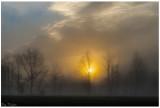 Morning Light and Fog