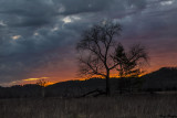 Cades Cove After the Sun Set