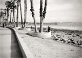 Low Tide View