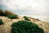 The Beach And Incoming Rain