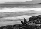 Log and Coast