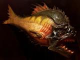 LyonMusée du cinochePiranha de Piranha 3D