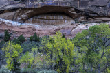 Alcove, Zion National Park, UT