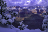 Clearing snowstorm in Grand Canyon National Park. AZ