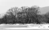 Bald Eagle Creek at Bullit Run 12/30/17