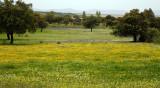 Extremadura Spain