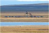 Gallocanta Laguna Hides