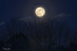 The Wolf moon. Also a blue moon and a super moon this time.