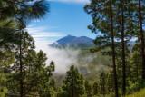 Pico del Teide in the background