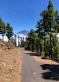 Tenerife Mountain Views