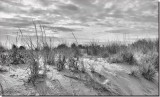 Rehoboth Beach Delaware USA