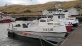 Diana VA 220