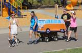 Grateful Dog Rescue Run at Woofstock, Johnson-Springview Park, Rocklin, CA August 27, 2017, Rocklin, CA